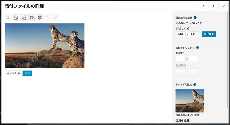 WordPress画像リサイズ